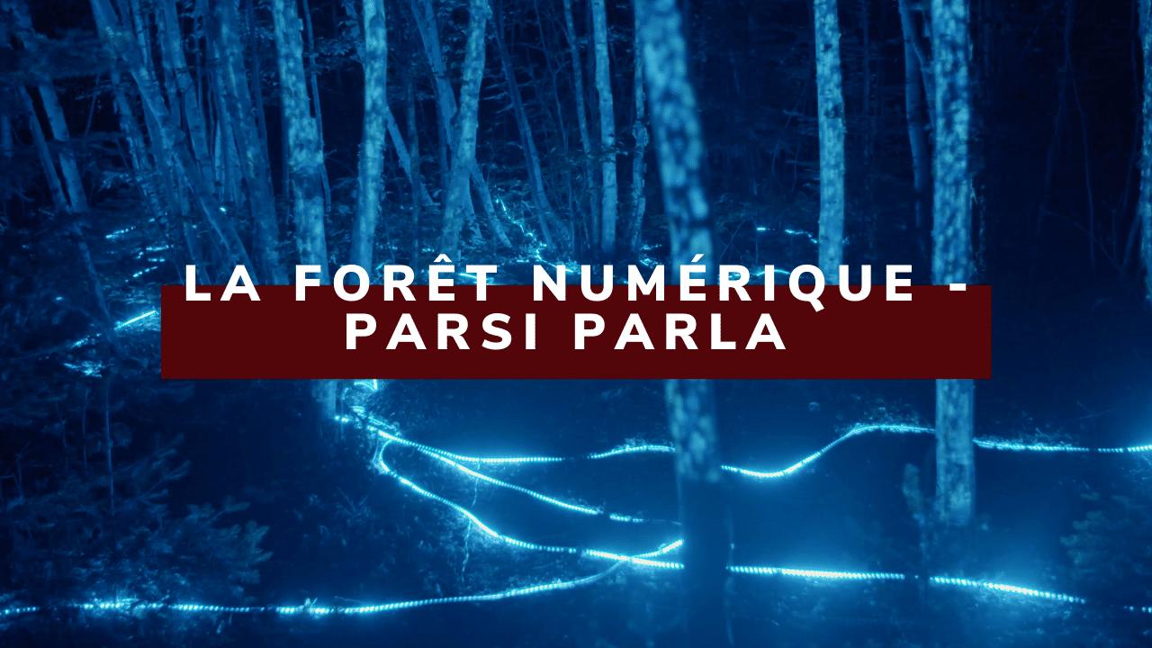 La Forêt numérique_ Petit Théâtre du Vieux Noranda